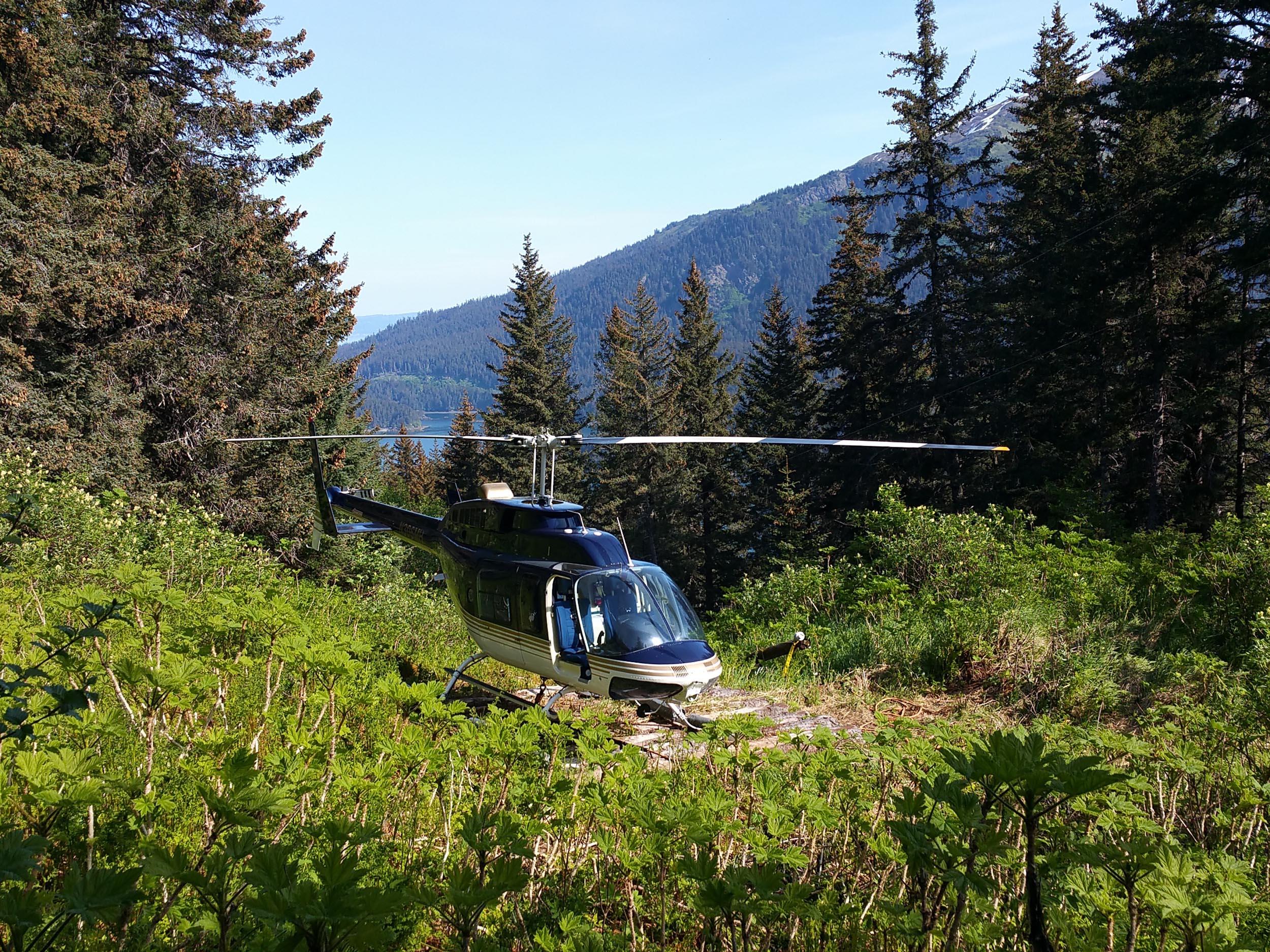 Fleet - Maritime Helicopters